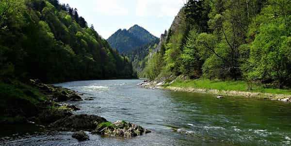 Rzeka Dunajec